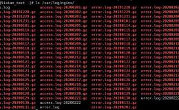 【Linux运维架构】第九篇 Nginx日志管理